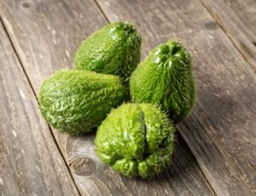Aktuell: Chayote